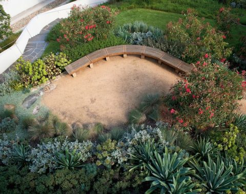 Garden of acclaimed Sydney based landscape architect, Sue Barnsley