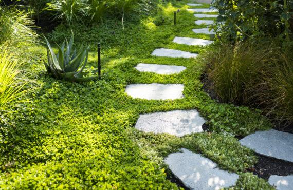 composed garden 7